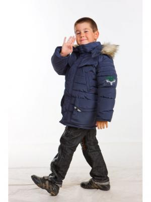 Куртка для мальчика Охотник Пралеска. Цвет: темно-синий