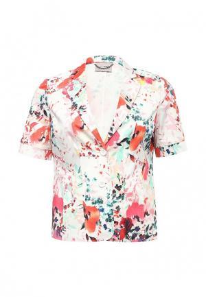 Пиджак Fiorella Rubino. Цвет: разноцветный