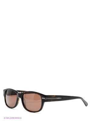 Солнцезащитные очки Byblos. Цвет: коричневый