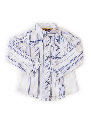 Рубашка Pilota. Цвет: белый, фиолетовый
