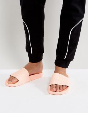 Adidas Originals Розовые шлепанцы Adilette BA7538. Цвет: розовый