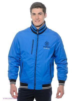 Куртка Stonecast. Цвет: синий, черный