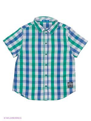 Рубашка Button Blue. Цвет: зеленый