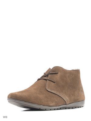Ботинки ELITE. Цвет: коричневый