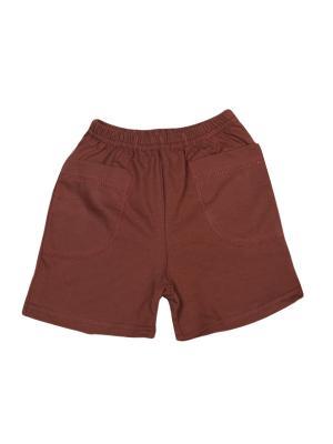 Шорты Flip. Цвет: коричневый