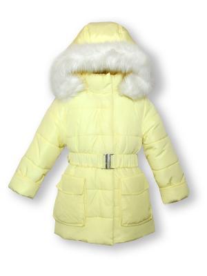 Куртка Артус. Цвет: светло-желтый