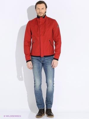 Куртка Sail Exp. Цвет: красный