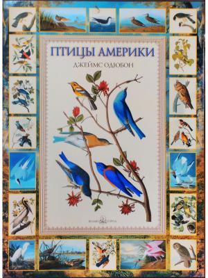 Птицы Америки Белый город. Цвет: белый