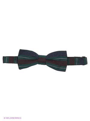 Бабочка Troy collezione. Цвет: темно-зеленый, темно-коричневый