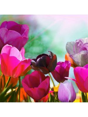 Декоративная наволочка Весеннее чудо  Рапира. Цвет: фиолетовый, зеленый, розовый