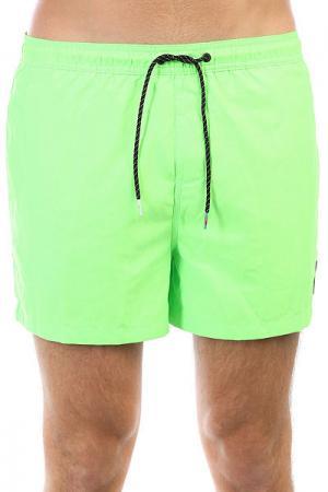 Шорты пляжные  Everydvl15 Green Gecko Quiksilver. Цвет: зеленый
