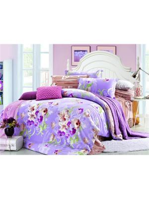 Постельное белье Present Семейный Amore Mio. Цвет: розовый, персиковый