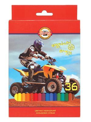 Набор карандашей цветных Спорт (36 цветов) Koh-i-Noor. Цвет: красный