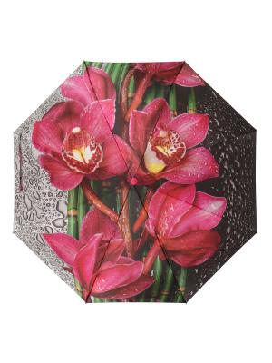 Зонт DINIYA. Цвет: черный, малиновый