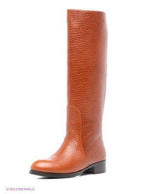 Сапоги Vitacci. Цвет: оранжевый