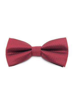 Галстук-бабочка Churchill accessories. Цвет: темно-бордовый, темно-красный, бордовый, красный