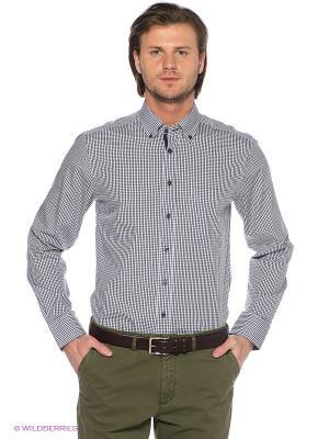 Рубашка ARROW. Цвет: синий, белый