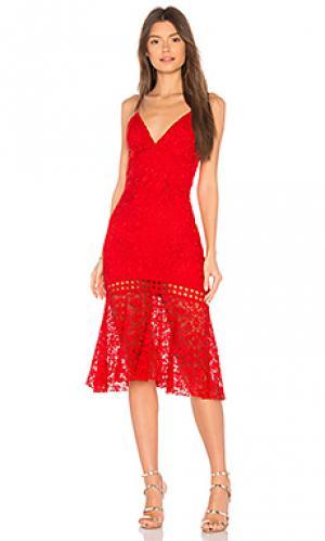 Кружевное платье diana Karina Grimaldi. Цвет: красный