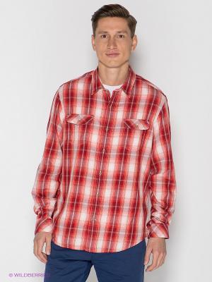 Рубашка TIMBERLAND. Цвет: красный, бледно-розовый