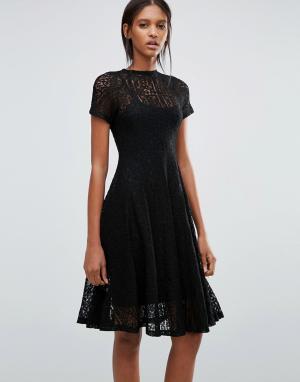 Goldie Кружевное расклешенное платье миди Romantics. Цвет: черный