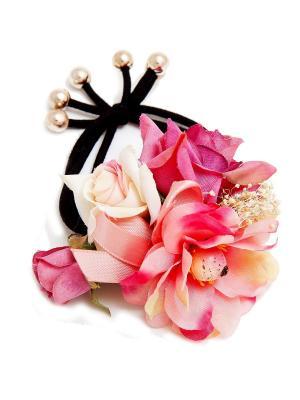 Резинка Kameo-bis. Цвет: фуксия, кремовый, розовый