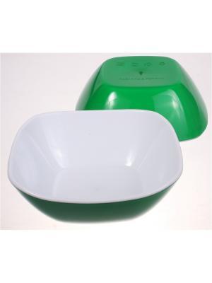 Салатница малая, 270 мл, зеленая, набор 2 штуки Радужки. Цвет: зеленый