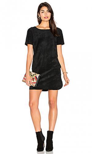 Платье из искусственной замши reya Velvet by Graham & Spencer. Цвет: черный