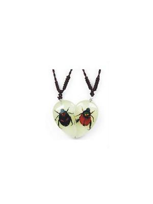 В Мире Насекомых Golden Cochafer/Fortune Beetle Кулон 2в1 Склад Уникальных Товаров. Цвет: прозрачный