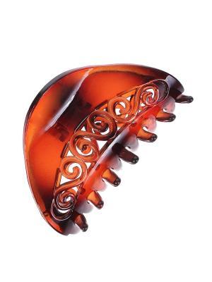 Краб Migura. Цвет: коричневый
