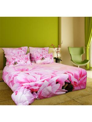 Постельное белье Astra 2,0 сп. Buenas Noches. Цвет: персиковый, розовый