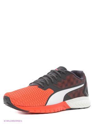 Кроссовки IGNITE Dual Puma. Цвет: красный, черный