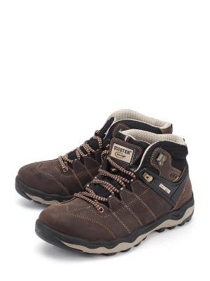 Ботинки Scooter. Цвет: коричневый