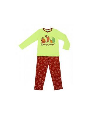 Пижама Модамини. Цвет: салатовый, бордовый