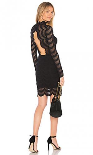 Мини платье classic fiesta Nightcap. Цвет: черный