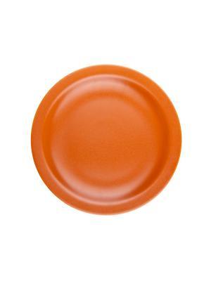 Набор тарелок обеденных ТЕРРАКОТА 26 см 6 шт Biona. Цвет: терракотовый