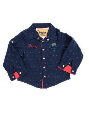 Рубашка Pilota. Цвет: черный, красный