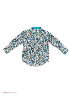 Блузка Nota Bene. Цвет: бирюзовый