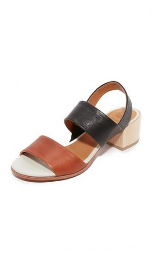 Сандалии Tares City Coclico Shoes. Цвет: йорк/черный/облачный
