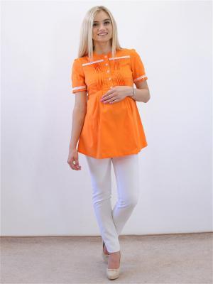 Блузка Адель. Цвет: оранжевый