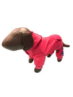 Спортивный костюм Pet's Fashion. Цвет: розовый