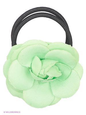 Резинка Oodji. Цвет: зеленый