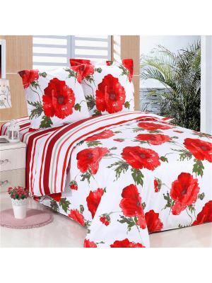 Постельное белье Tango Семейный Amore Mio. Цвет: красный, белый, зеленый