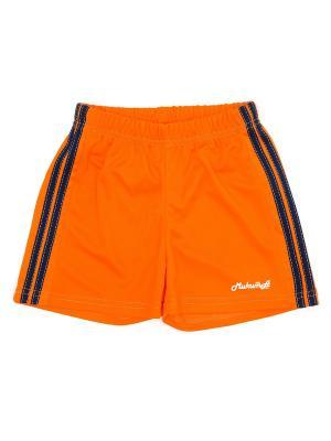 Шорты спортивные МИКИТА. Цвет: оранжевый, темно-синий