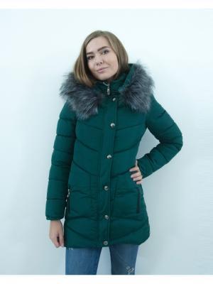 Куртка Ampir Style. Цвет: зеленый
