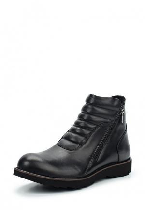 Ботинки Conhpol Dynamic. Цвет: черный