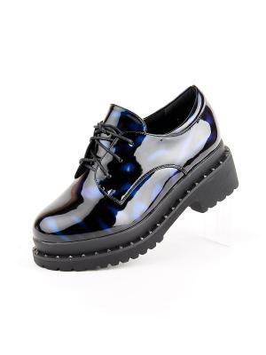 Ботинки Best&Best. Цвет: черный, синий
