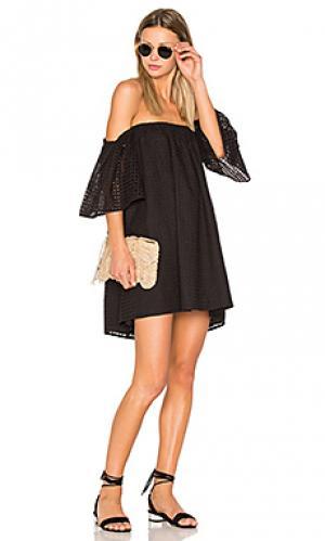 Платье в сеточку BLAQUE LABEL. Цвет: черный