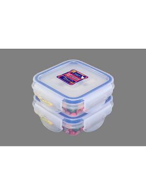 Набор 2-х герметичных контейнеров 110 мл XEONIC CO LTD. Цвет: прозрачный, синий