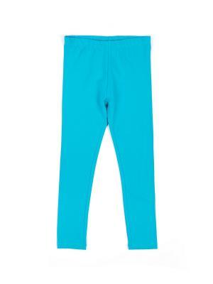 Леггинсы Coccodrillo. Цвет: голубой