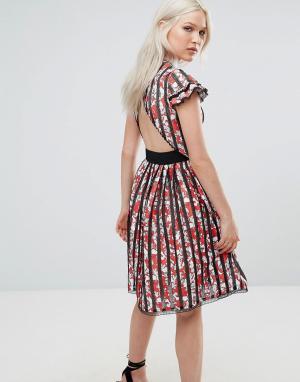 Foxiedox Короткое приталенное платье в полоску с открытой спиной Mirab. Цвет: мульти